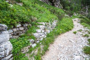 Pot proti zavetišču Gemona. Foto: Grega Žorž