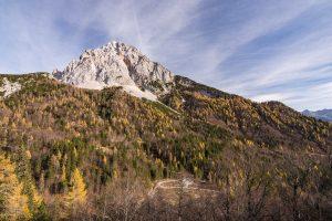 Razgled proti Prisojniku in čistini avstrijskega naselja Schutthalde. Foto: Grega Žorž