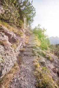 Pot od oskrbnega naselja pod vršiško cesto proti utrdbi št. 2. Foto: Grega Žorž